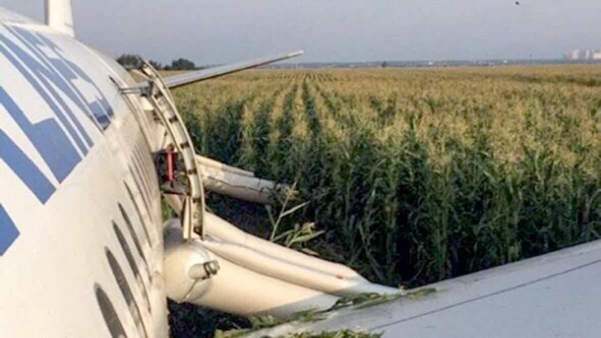 Літак А321 сів в кукурудзяному полі через аварію – відео, фото