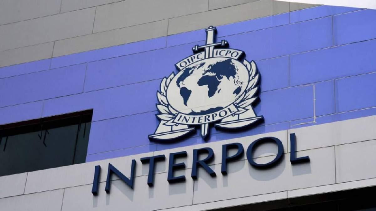 Вовка разыскивать Interpol
