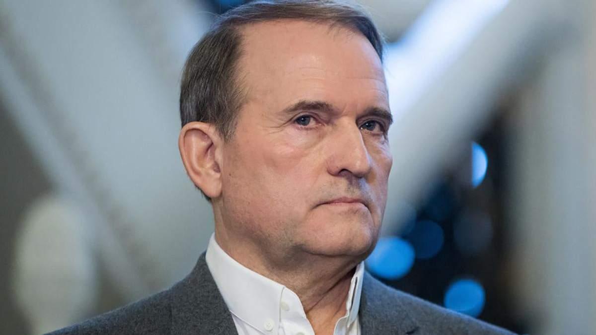 Медведчук хочет через суд запретить выпуск книги Кипиани о Стусе