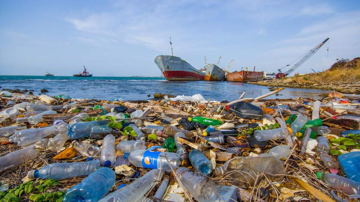 Чрезвычайная климатическая ситуация: успеет ли человечество спасти планету