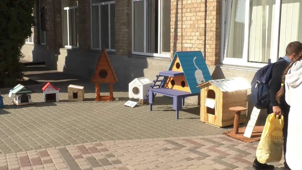 Школярі власноруч роблять дерев'яні будиночки для бездомних котів – фото
