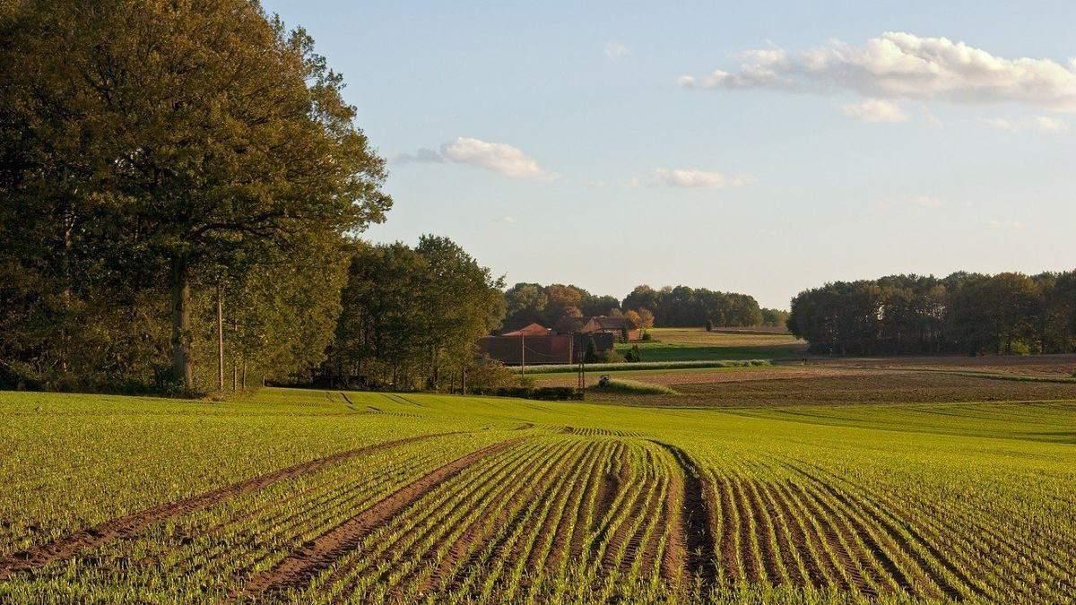 Землю можна буде продавати з жовтня 2020 року