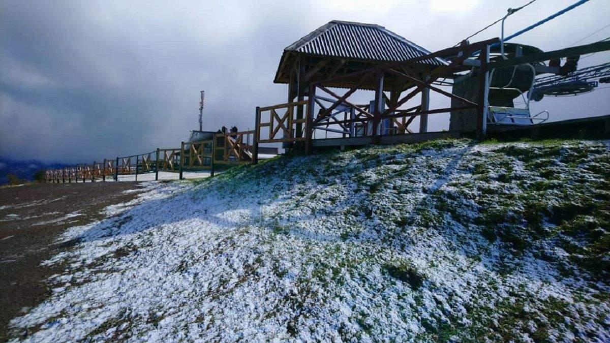 У Карпатах знову випав сніг: неймовірні фото, відео