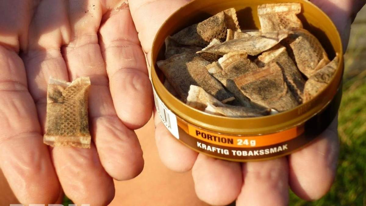 Снюс: як діє і чим небезпечний жувальний тютюн для здоров'я
