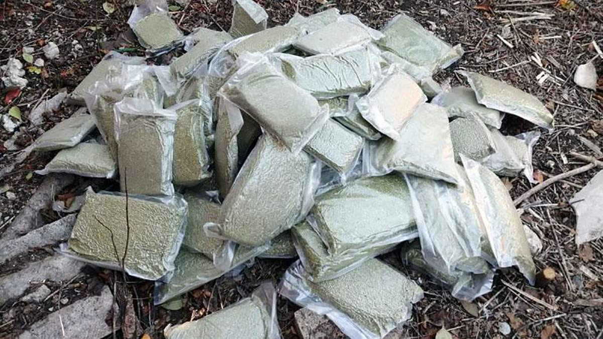 На Донетчине мужчина вырастил марихуану на миллион гривен