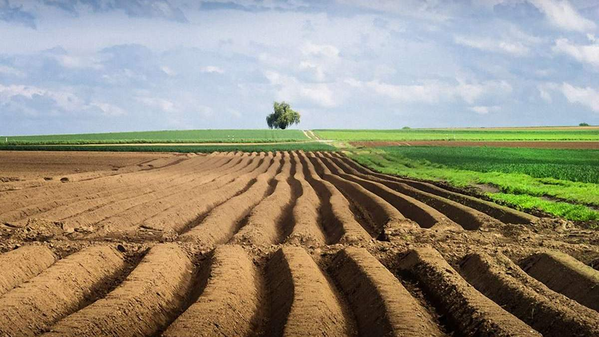 В Україні запустили сайт про земельну реформу