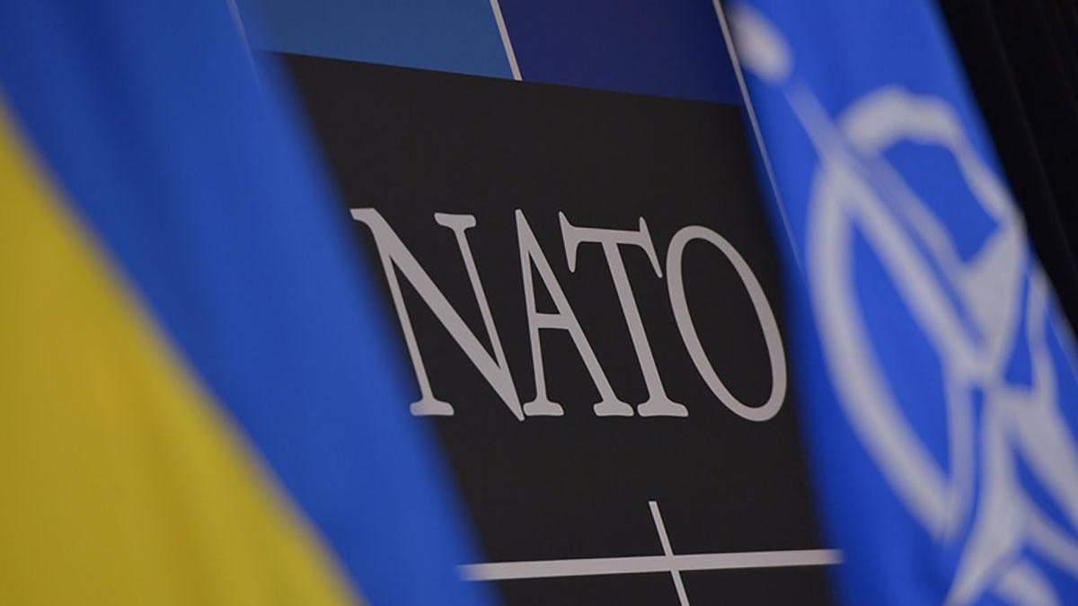 Украина не будет подавать новую заявку по ПДЧ в НАТО