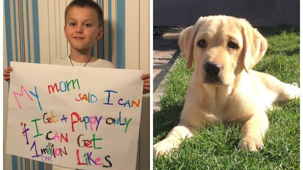 8-летний украинец собрал миллион лайков, чтобы родители купили ему собаку