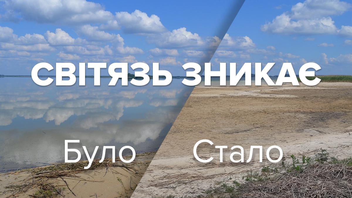 Озеро Світязь міліє: причини та наслідки осушення 2019 найглибшого озера України