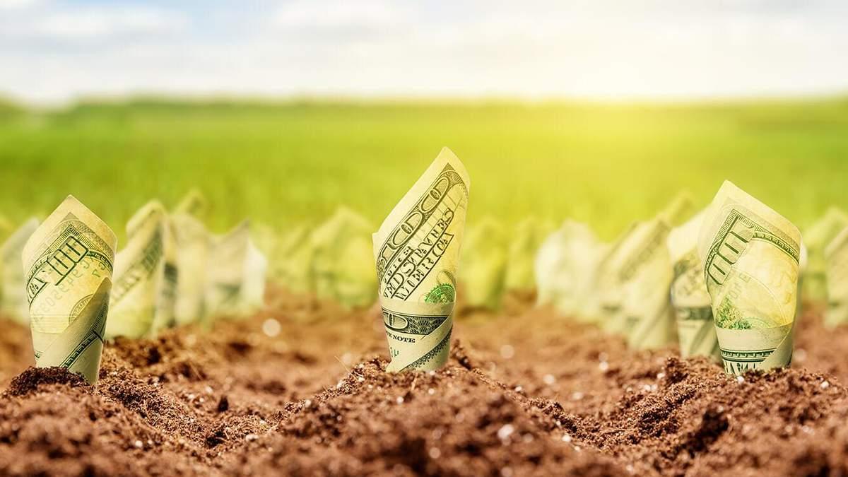 Вимога МВФ чи великий прибуток: чому Україні потрібно відкрити ринок землі