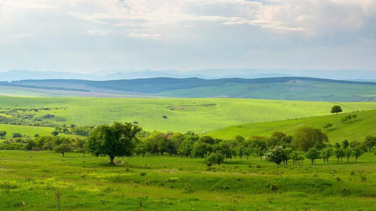 Землі за межами населених пунктів передадуть громадам