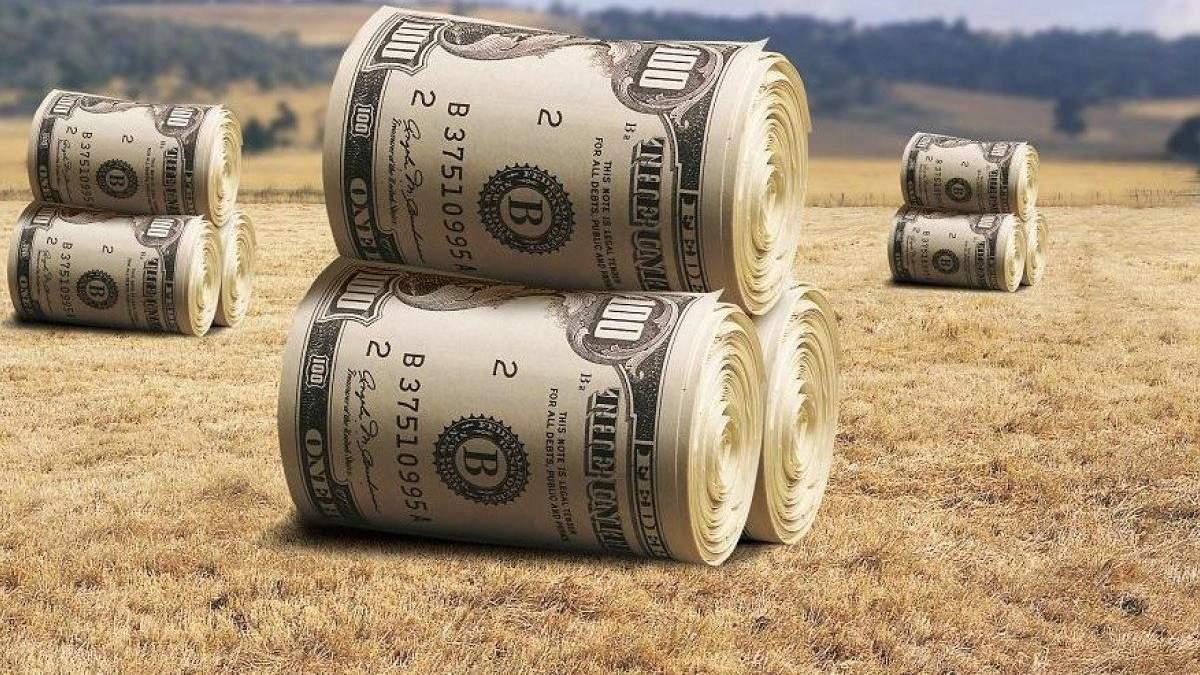 Реферма рынка земли в Украине – в активной фазе