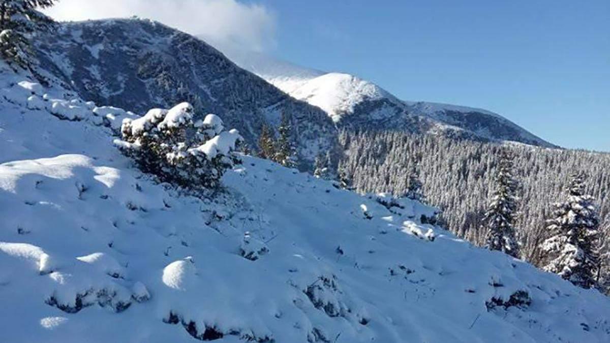 Сніг в Карпатах 2 грудня 2019 фото, відео