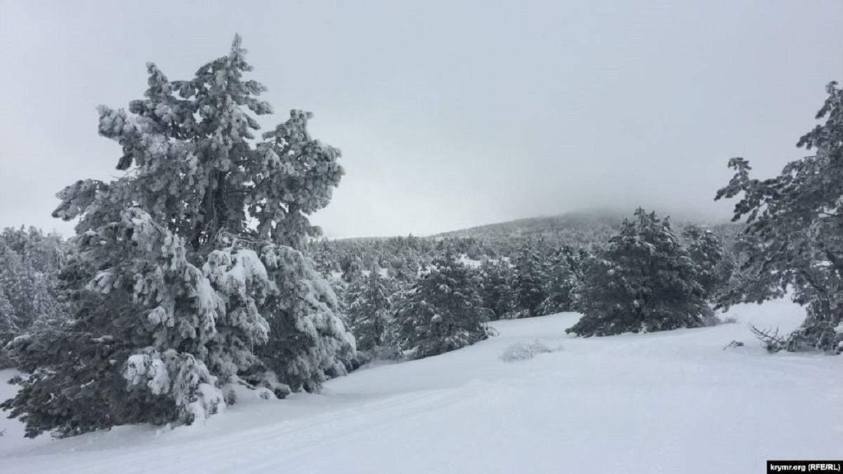 На найвищій вершині Криму випав сніг