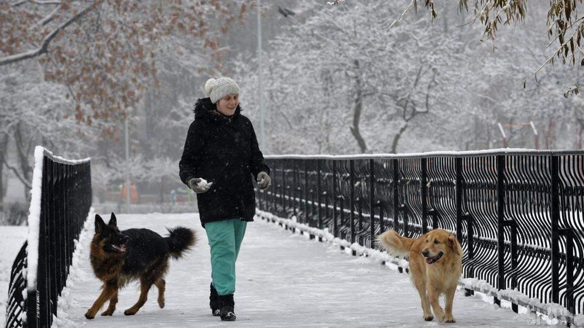 Прогноз погоди 8 грудня 2019 Україна – що обіцяє синоптик