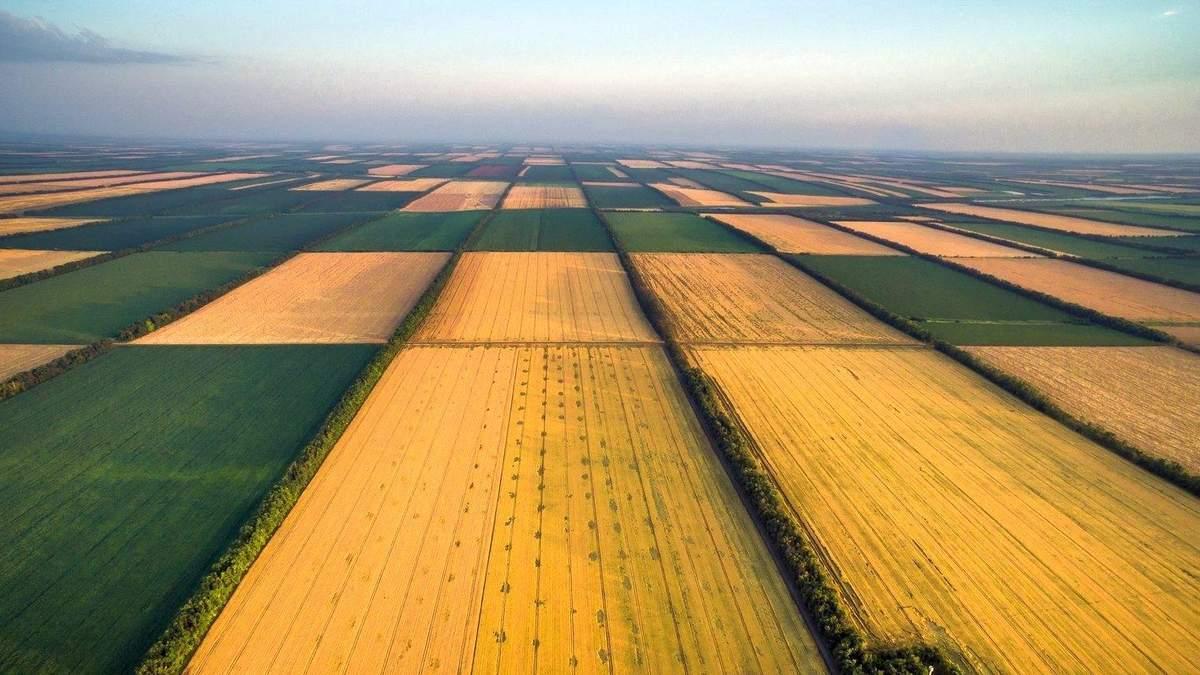 Чи можна продавати українські землі: що відомо про мораторій - 19 декабря 2019 - 24 Канал