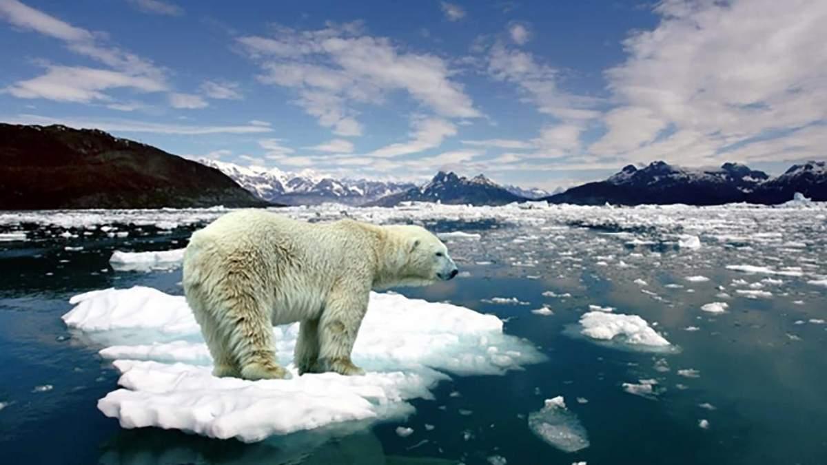 Украинцы верят в глобальное изменение климата