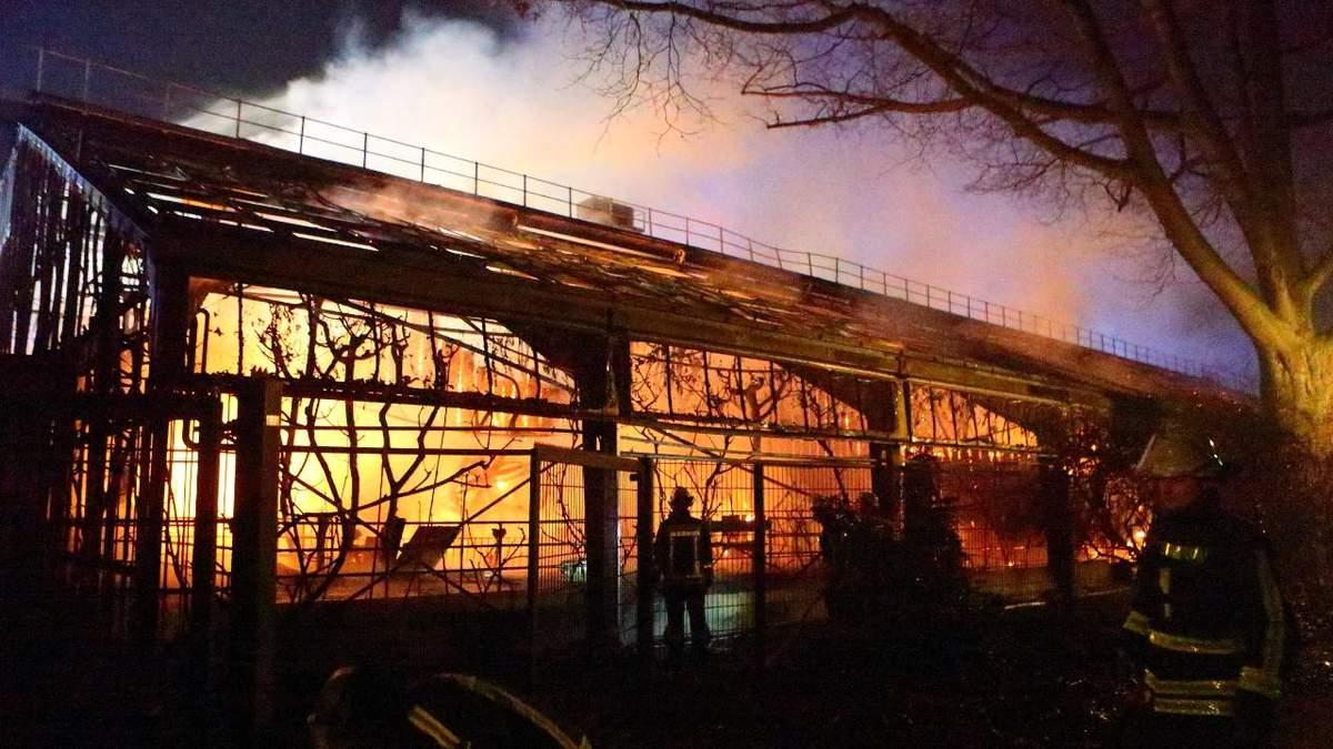 Пожежа в зоопарку в Німеччині