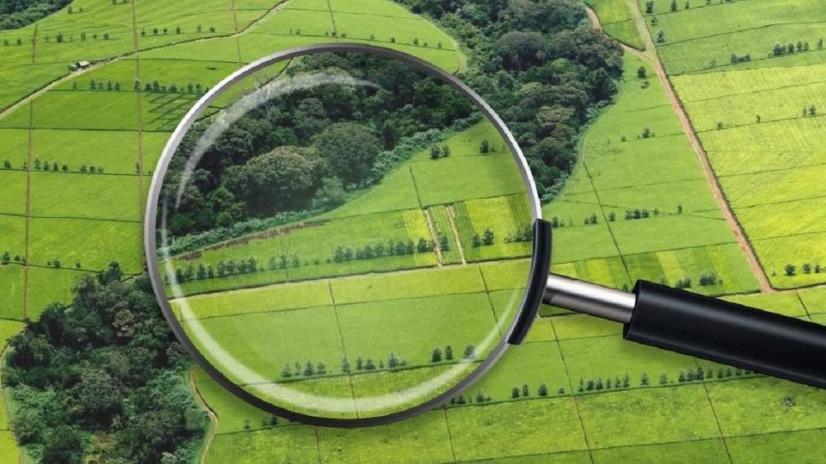 Законопроєкт про ринок землі готовий до другого читання: які правки вніс комітет