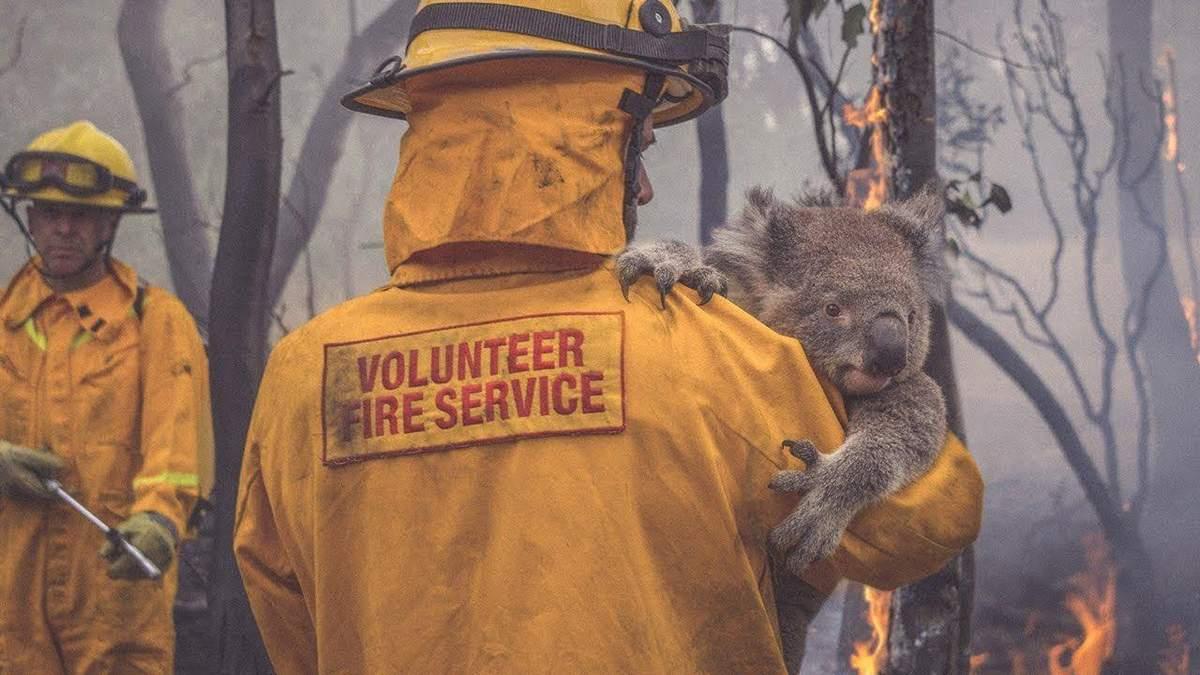 Сокрушительные пожары в Австралии