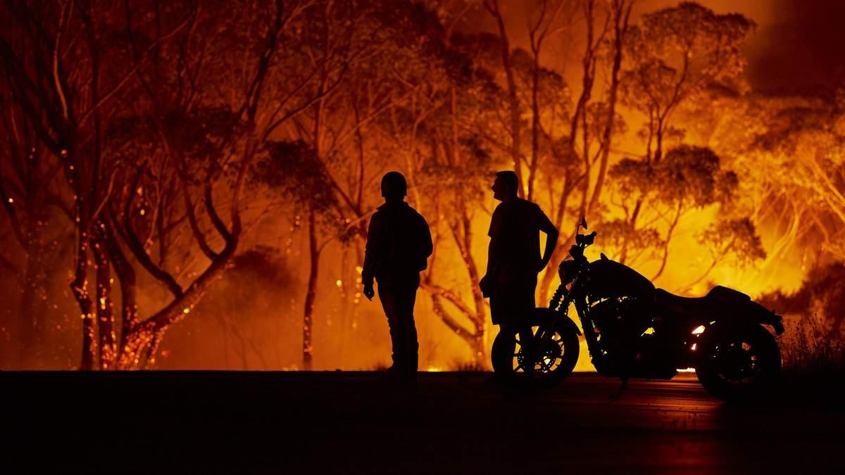 Пожары в Австралии - намеренно поджигали десятки человек
