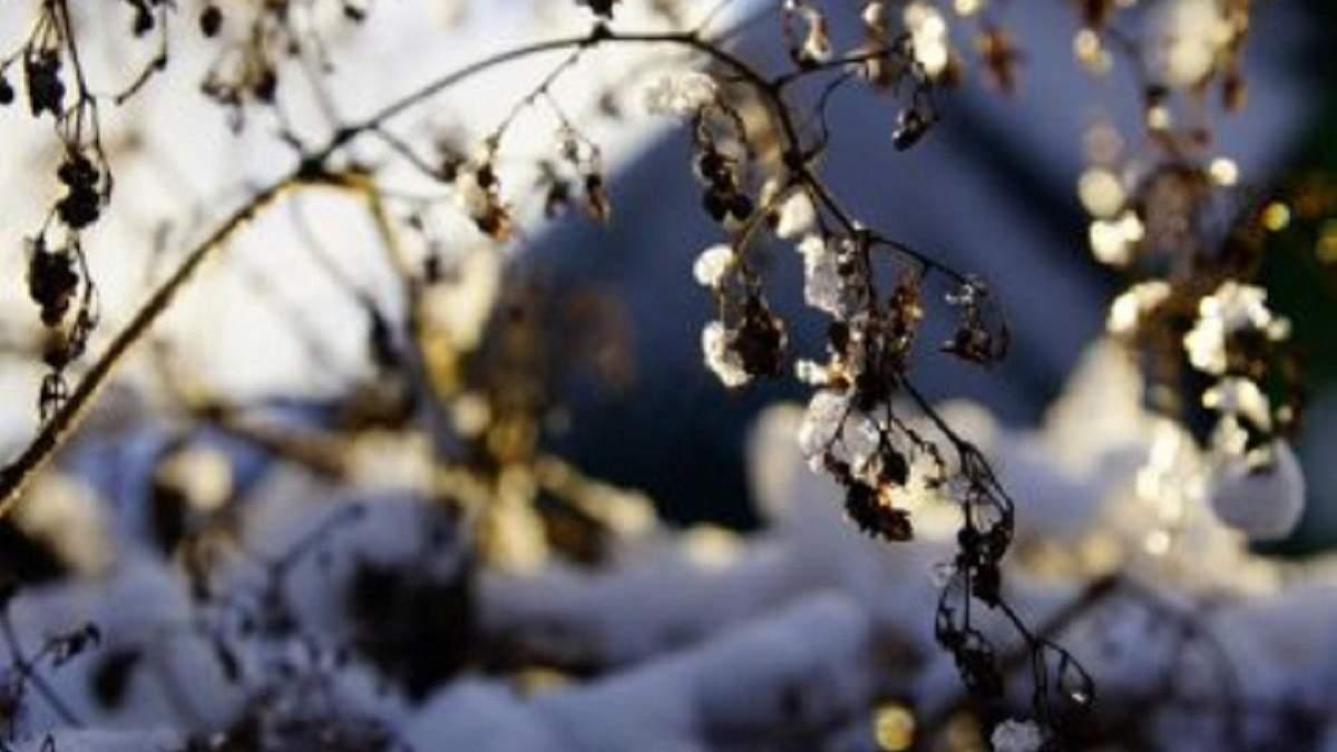 Погода 12 січня 2020 Україна: яку погоду обіцяє синоптик