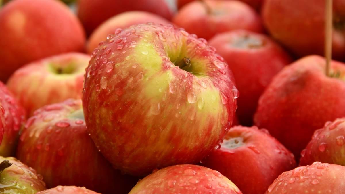 """Два яблука в день знижують рівень """"поганого"""" холестерину"""