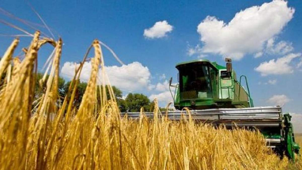 Україна – третій найбільший експортер агропродукції до країн ЄС