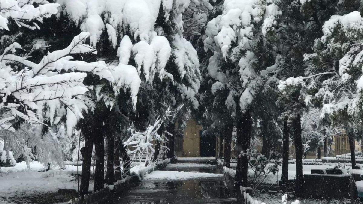 Сніг в Афганістані забрав життя 16 людей