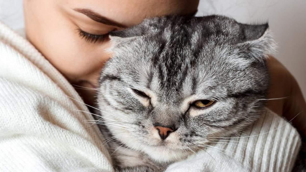 Черкаська ветклініка відкрила вакансію обіймача котів