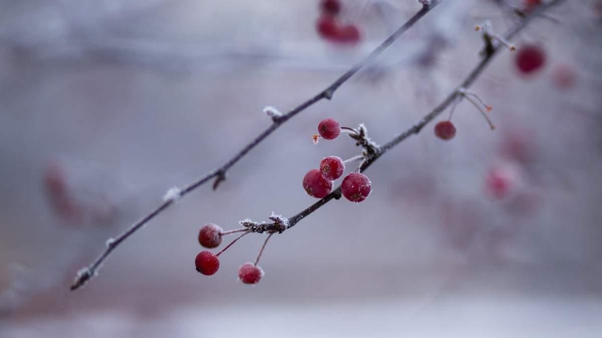 Погода 19 січня 2020 Україна: яку погоду обіцяє синоптик