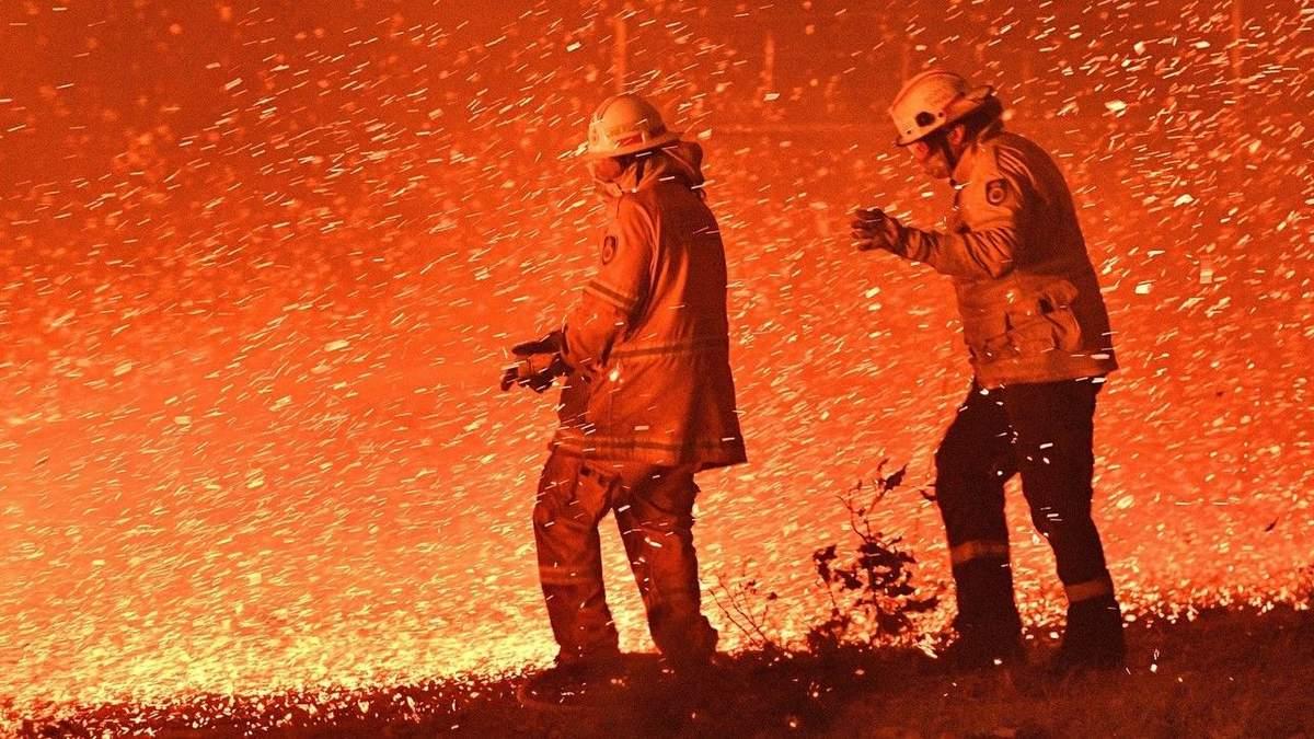 Пожежі в Австралії 2020 – Сотні тисяч риб загинули через попіл