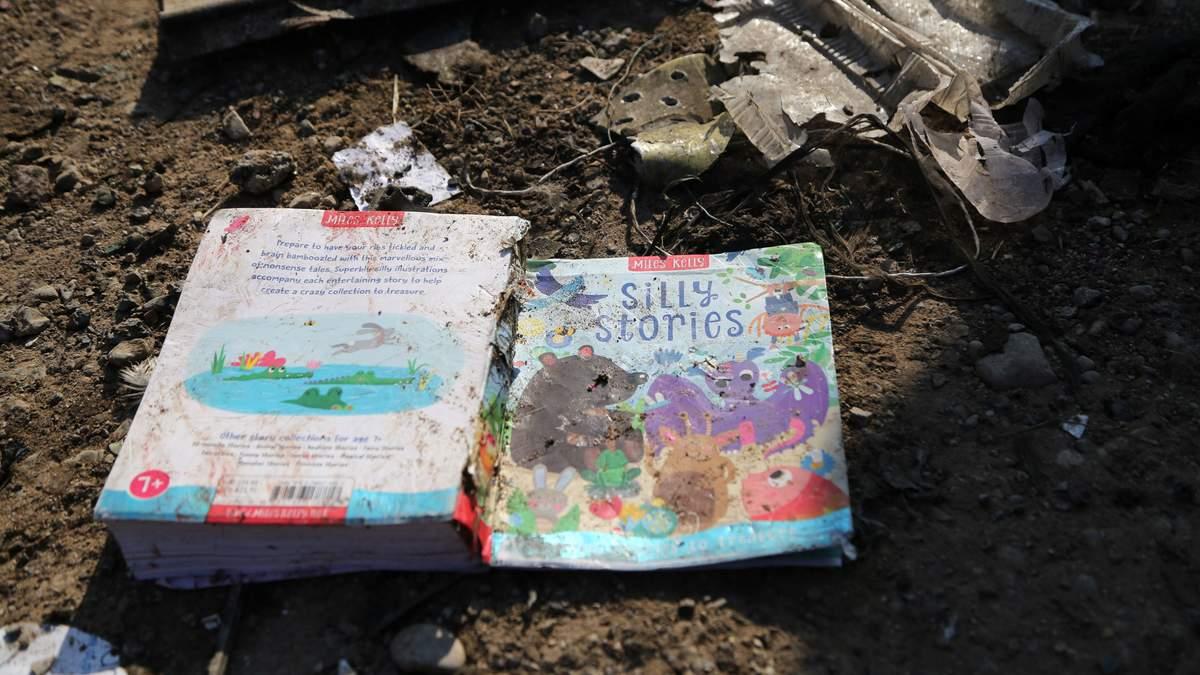Авіакатастрофа МАУ – Іран передумав віддавати чорні скриньки Україні