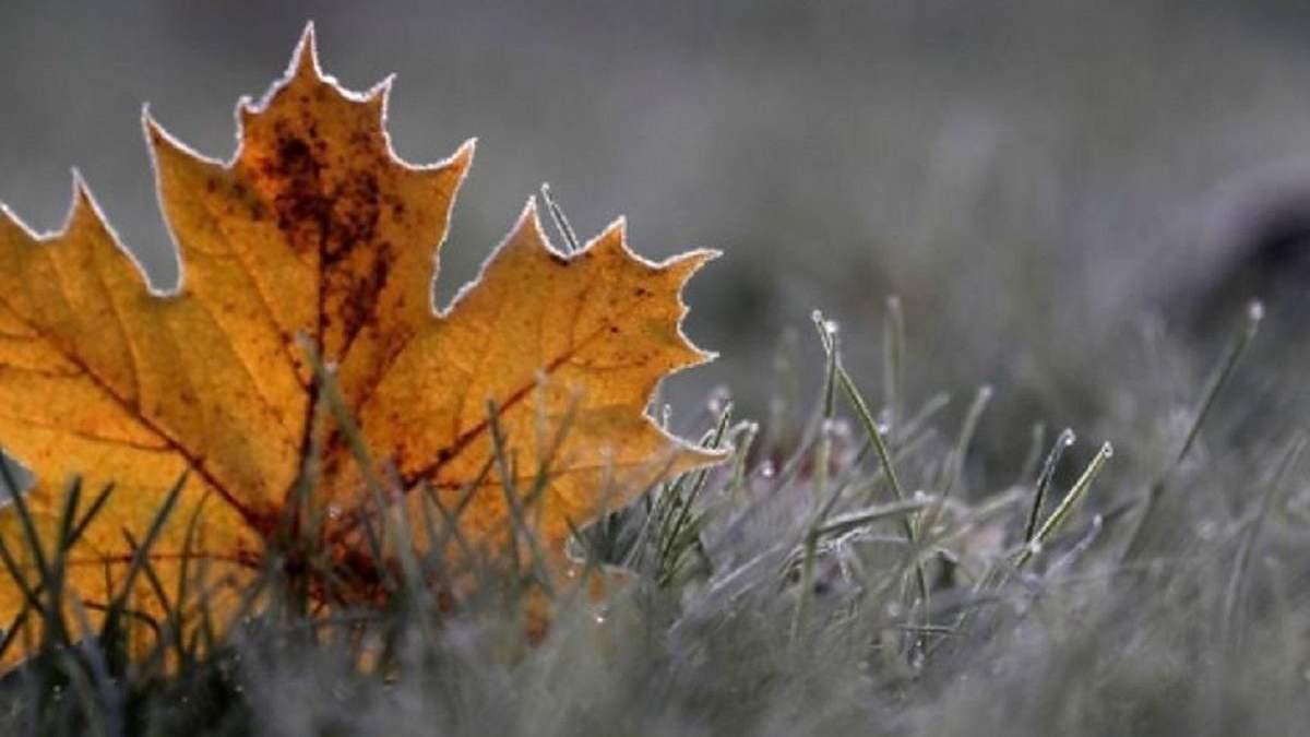Погода 21 січня 2020 Україна: яку погоду обіцяє синоптик