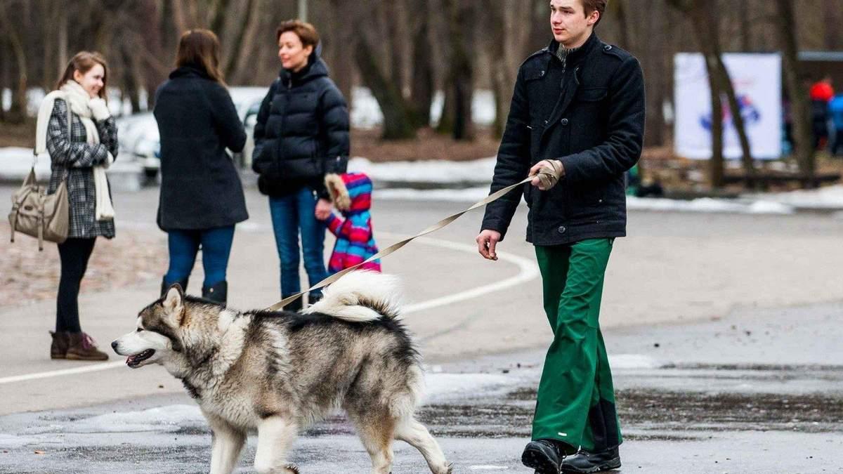 Погода 25 января 2020 Украина: какую погоду обещает синоптик