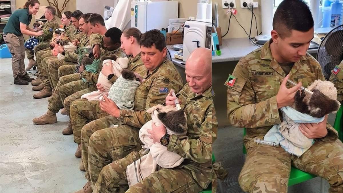 Появились милые фото австралийских военных, кормящих спасенных коал