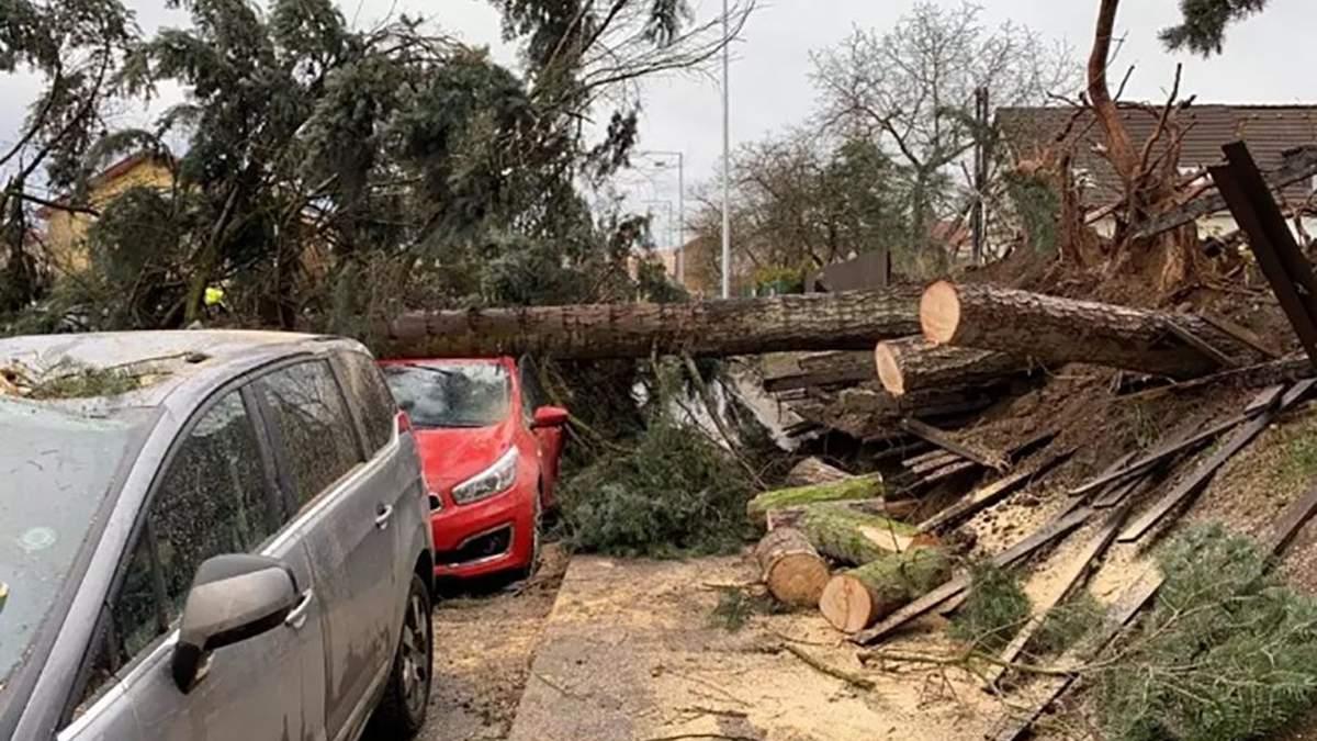 Ураган в Чехии 28 января 2020 – фото последствий урагана