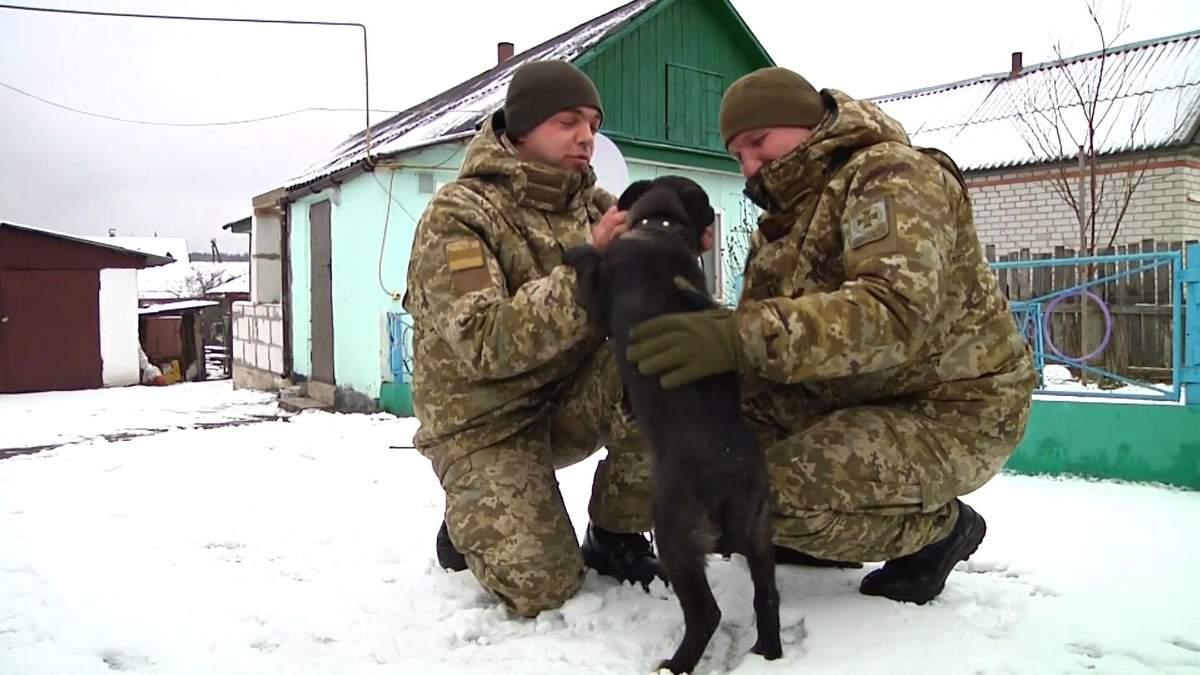 Замотали скотчем и выбросили: пограничник спас щенка из лесополосы