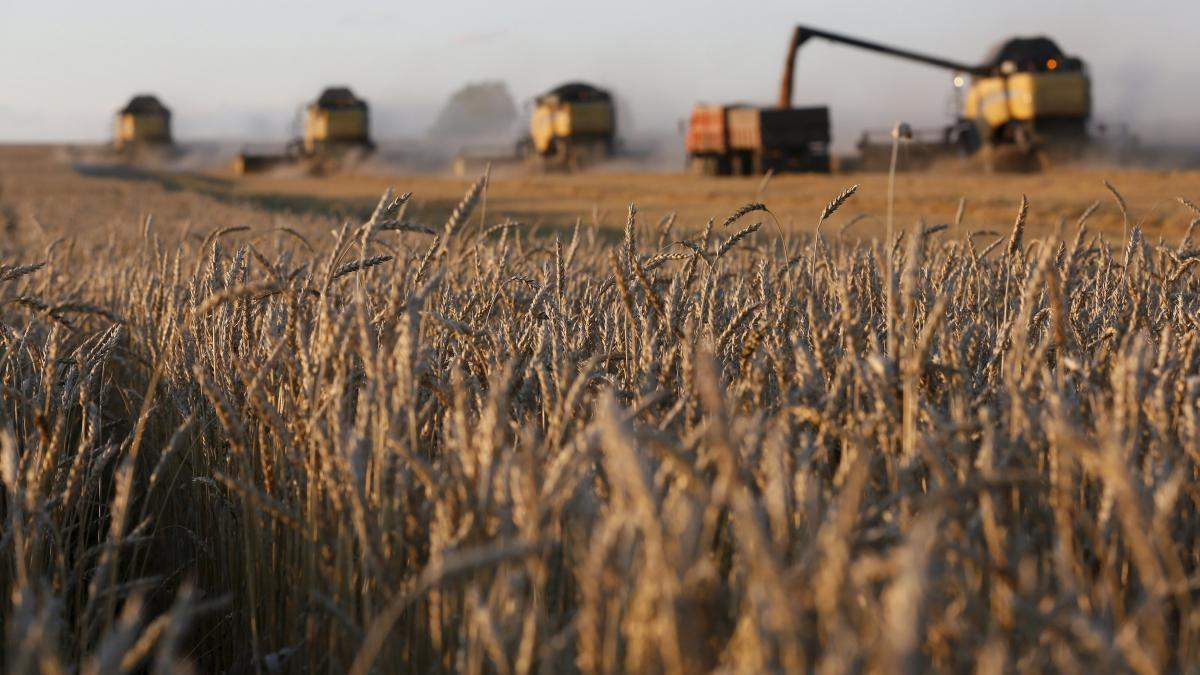 Фермеры смогут ускорить развитие своего бизнеса