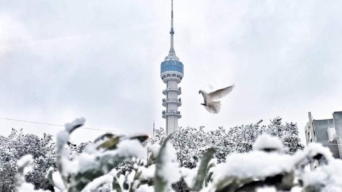 В Багдаде впервые за 12 лет выпал снег: впечатляющие фото и видео