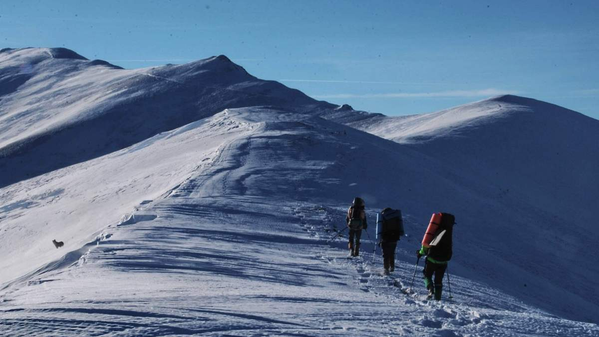 ГСЧС запустила онлайн-регистрацию туристов, которые собираются идти в горы