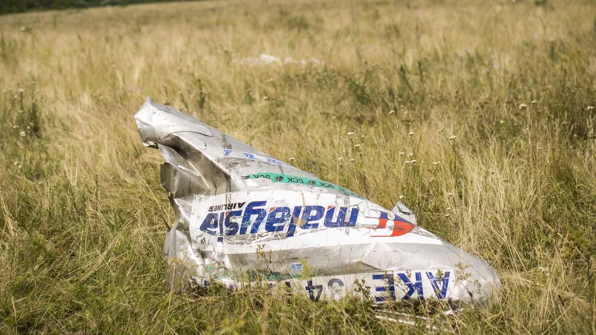 Катастрофа MH17: международные следователи нашли очевидца запуска ракеты по самолету