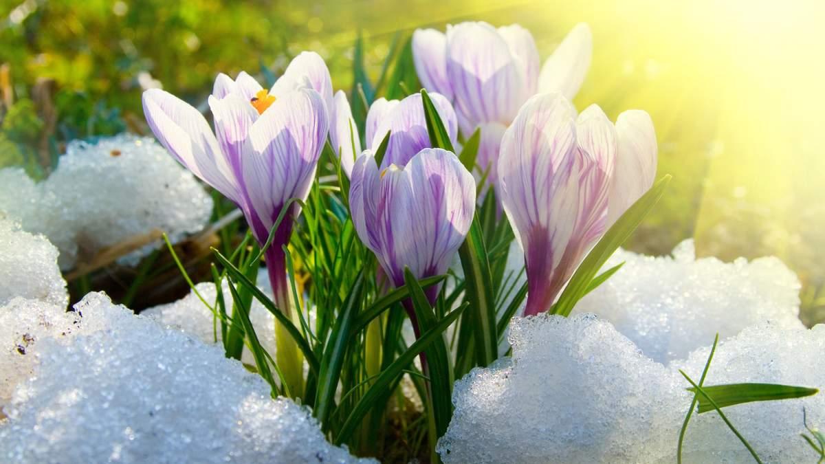 Погода на март 2020 – прогноз погоды на март в Украине