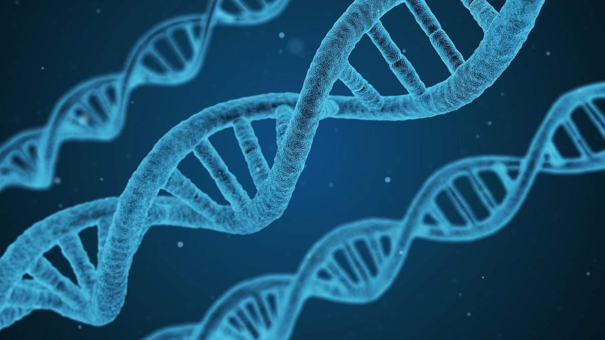 Жінки живуть довше через хромосоми