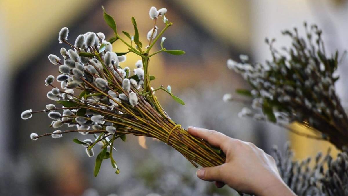 Как украинские политики поздравляли христиан восточного обряда с Вербным воскресеньем