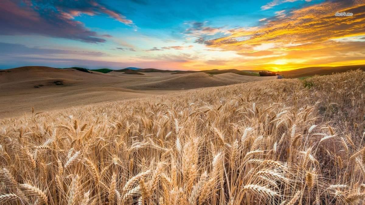 Об инвестиционном потенциале украинского энергетического и аграрного сектора