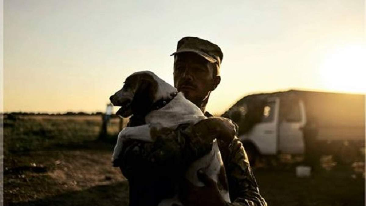 Волонтери покажуть киянам покинутих на Донбасі тварин