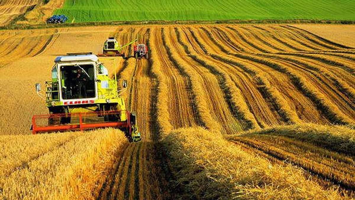 Агробізнес і українське село – шляхи розходяться (частина 2)?