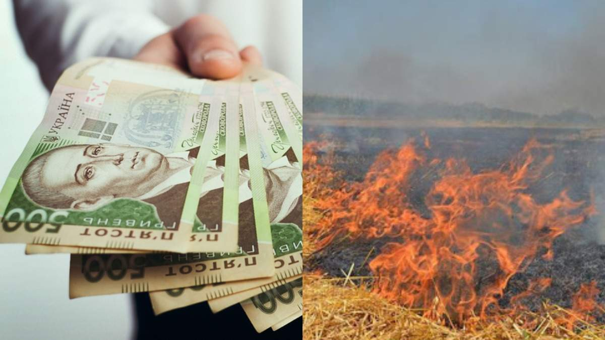 Принятие антикризисного бюджета, штрафы за поджог травы – Гуд найт Юкрейн