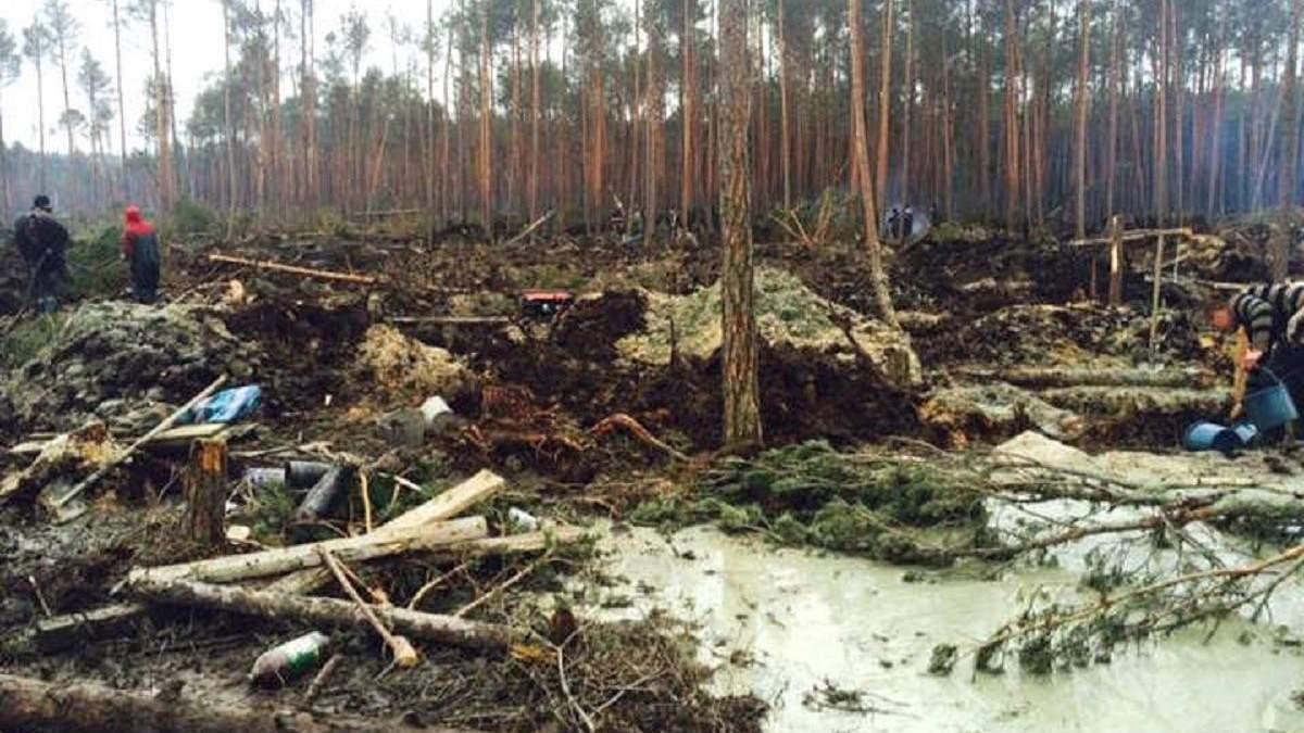 """Бурштинові копачі перетворюють ліс у """"мертву землю"""""""